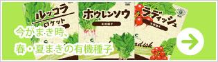 今がまき時、春・夏蒔きの有機種子 バナー