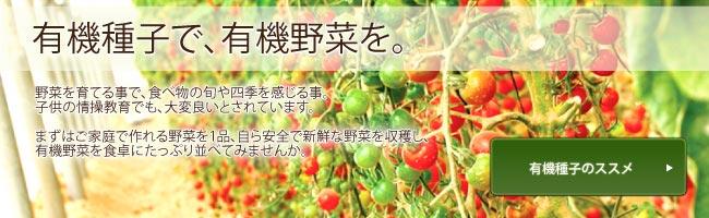 有機種子で有機野菜を 有機種子のススメ バナー
